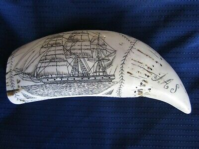 """Faux Carved Scrimshaw of a Whale's Tooth, Replica of Sailing Vessel """"THE COMET"""""""