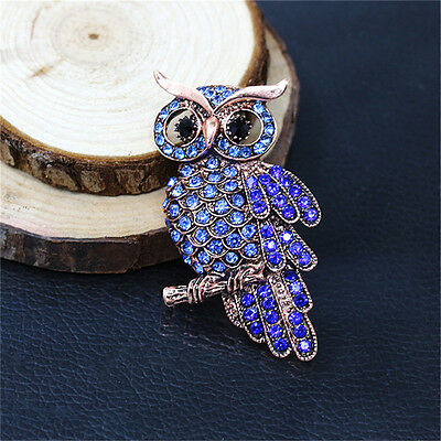 Owl Brooches Bouquet Vintage Wedding  Scarf Pin Up Buckle Broches W7