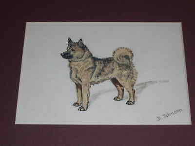 Antique Norwegian Buhund Dog Oil Painting On Canvas By D. Johnson