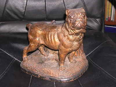 Very Rare Large Antique Pit Bull Terrier Terracotta Dog Humidor 1895