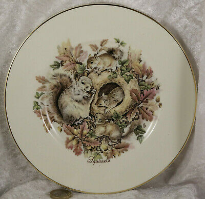 Rose wood china plate featuring grey squirrels woodland wildlife collectable