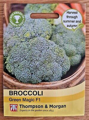 Thompson /& Morgan 35 Seeds Broccoli Green Magic F1 Hybrid Vegetable