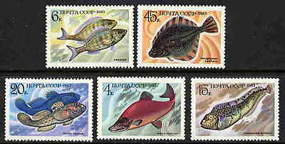 Russia 1983 Food Fish Stamps - Mint Complete Set Of 5!