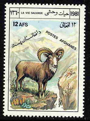 Afghanistan 1981  Protected Animals - Bighorn Sheep Mint Complete Stamp!