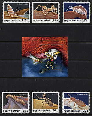 Romania 1993 Cave Exploration - Cave Animals - Cave  Insects Set And Sheet!