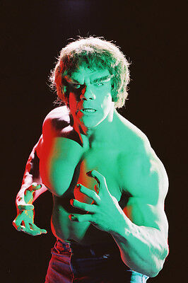 Lou Ferrigno The Incredible Hulk Color 24X36 Poster