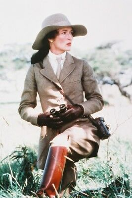 Meryl Streep Out Of Africa Color 24X36 Poster Print