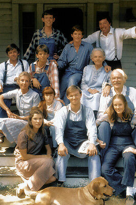 The Waltons Tv Cast 36X24 Poster Print