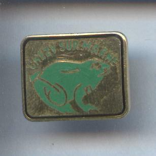 Rare Pins Pin's .. Grenouille Frog  Chevy Sur Marne #5A