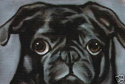 BLACK PUG Signed ACEO Dog Art Mini PRINT Vern Painting