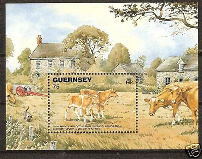 Guernsey # 475 Mnh Agricultural Society Cows Animals