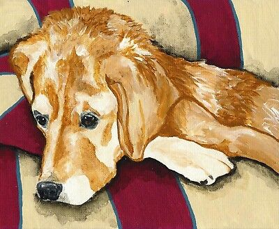 GOLDEN RETRIEVER Couch dog art PRINT of Painting VERN