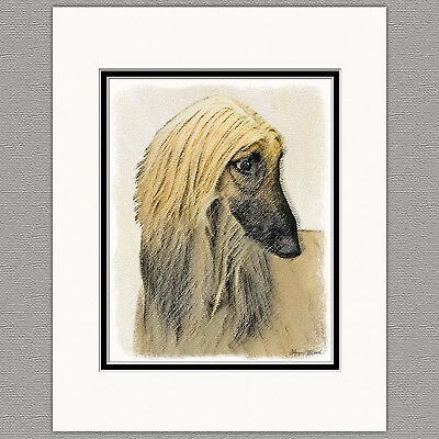 Afghan Hound Dog Red Cream Original Art Print 8x10 Matted to 11x14