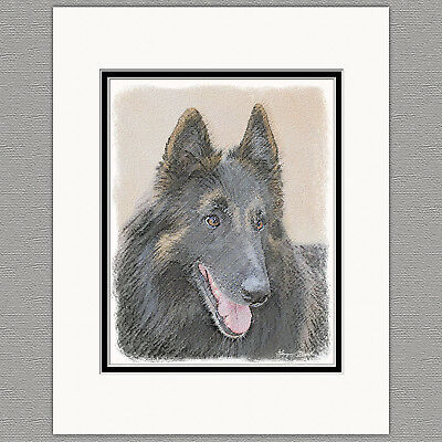 Belgian Tervuren Dog Original Art Print 8x10 Matted to 11x14