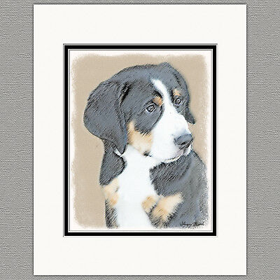 Bernese Mountain Dog Puppy Original Print 8x10 Matted to 11x14