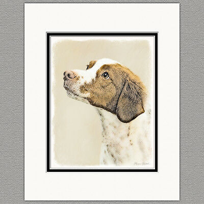 Brittany Spaniel Original Art Print 8x10 Matted to 11x14