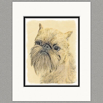 Brussels Griffon Bruxellois Original Art Print 8x10 Matted to 11x14