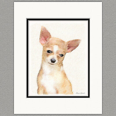 Chihuahua Smooth Fawn and White Dog Original Art Print 8x10 Matted to 11x14