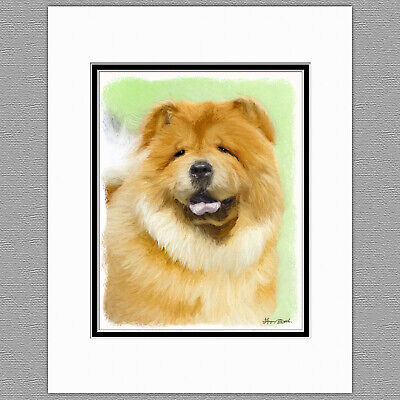 Chow Chow Dog Original Art Print 8x10 Matted to 11x14