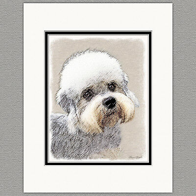 Dandie Dinmont Terrier Original Art Print 8x10 Matted to 11x14
