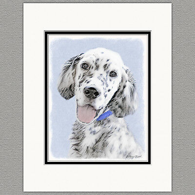 English Setter Original Art Print 8x10 Matted to 11x14