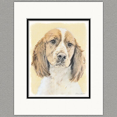 English Springer Spaniel Original Print 8x10 Matted to 11x14