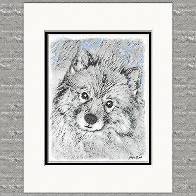Keeshond Bethany Original Art Print 8x10 Matted to 11x14