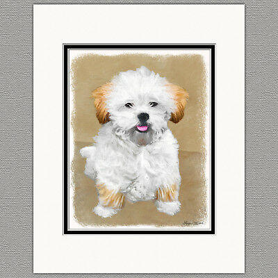 Lhasa Apso Puppy Original Art Print 8x10 Matted to 11x14