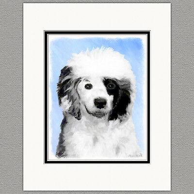 Portuguese Water Dog Original Art Print 8x10 Matted to 11x14