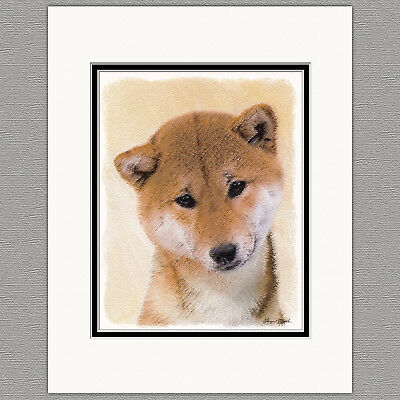 Shiba Inu Dog Original Art Print 8x10 Matted to 11x14
