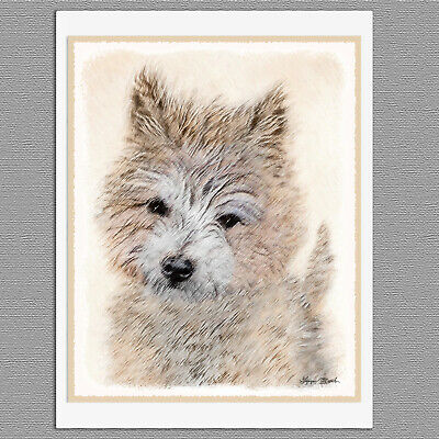 6 Cairn Terrier Puppy Dog Blank Art Note Greeting Cards