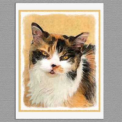 6 Calico Cat Blank Art Note Greeting Cards