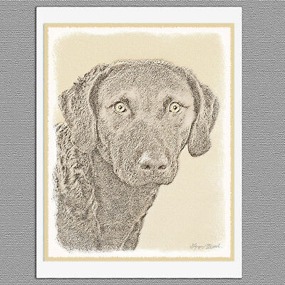 6 Chesapeake Bay Retriever Blank Art Note Greeting Cards