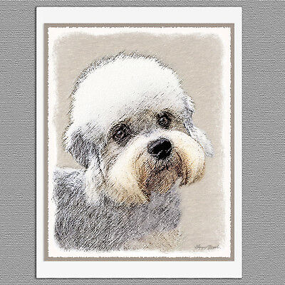 6 Dandie Dinmont Terrier Dog Blank Art Note Greeting Cards