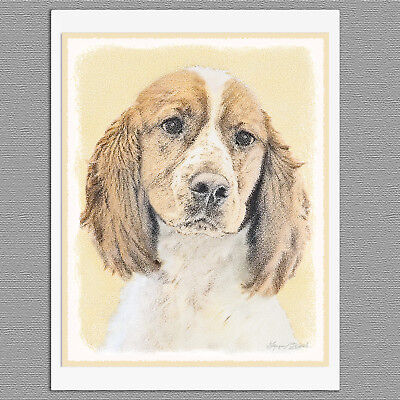 6 English Springer Spaniel Blank Art Note Greeting Cards