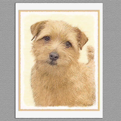 6 Norfolk Terrier Dog Blank Art Note Greeting Cards