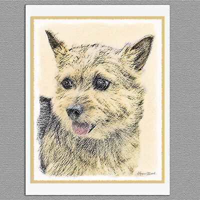 6 Norwich Terrier Dog Blank Art Note Greeting Cards