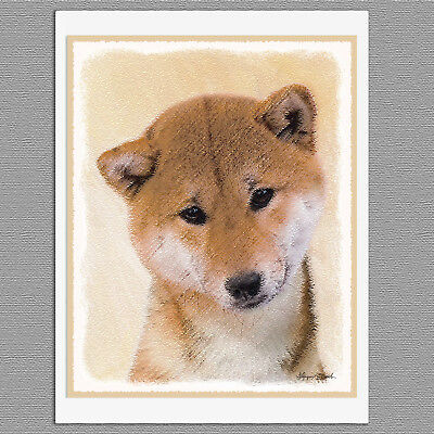 6 Shiba Inu Dog Blank Art Note Greeting Cards