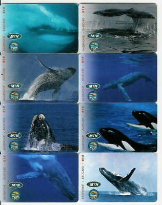 Sud Africa - South Africa - Ballenas - Whales - 631