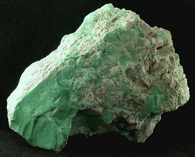 1510 Gram Lucin  Utah Variscite Spiderweb Rough Gem