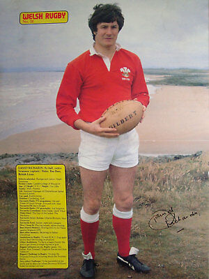 David Richards Swansea Wales Lions Welsh Rugby Poster