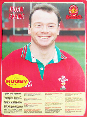 Ieuan Evans Llanelli & Wales Rugby Poster Series