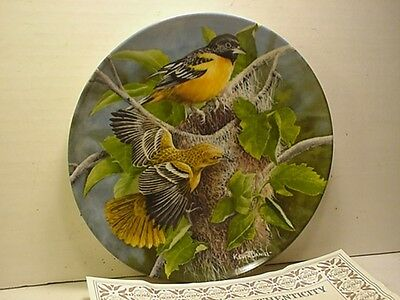 Knowles - Birds of Your Garden - The Baltimore Oriole