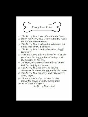 """Kerry Blue Terrier """"Rules"""" Dog Art Print - Matted"""
