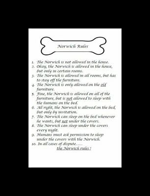 "Norwich Terrier ""Rules"" Dog Art Print - Matted"