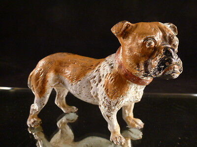 Original Vienna bronze,Antique Vintage VIENNA BRONZE BULLDOG Dog Cold-Painted So