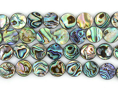 """0799 12mm abalone shell flat coin loose beads 16"""""""