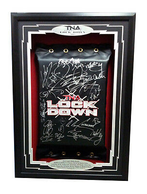 Official TNA Impact Wrestling 2012 Autographed Lockdown Turnbuckle Pad