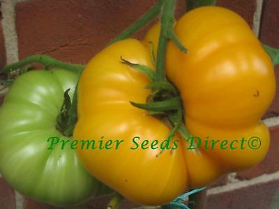 Vegetable Tomato Brandywine Yellow 100 Finest Seeds