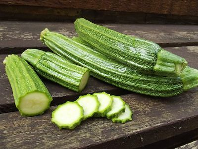 Vegetable  Courgette Romanesco  30 Finest Seeds